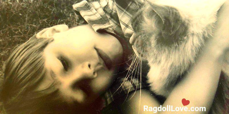 Boy and Blue Point Ragdoll Cat