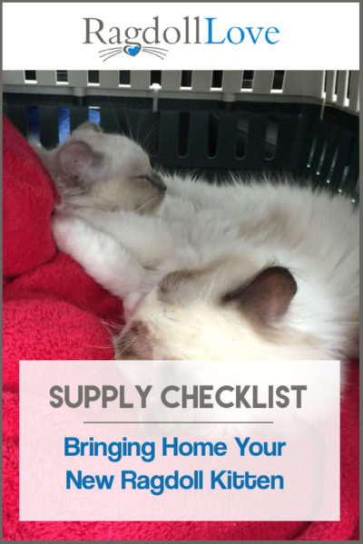 SUPPLY CHECKLIST BRINGING HOME A RAGDOLL KITTEN - 2 SLEEPING RAGDOLL KITTENS