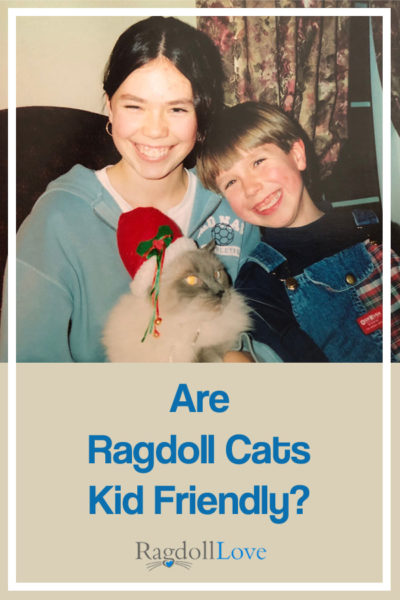 Boy and girl happy with their Ragdoll Christmas Cat