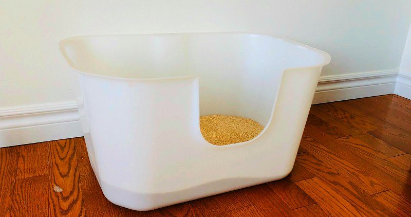 White Litter Box